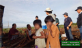 Link between children's education and acacia planting exposed