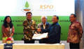 Peat agency signs MoU with RSPO, deprioritizing ISPO
