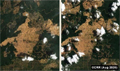 Report: Significant deforestation decline in Indonesian palm oil concessions