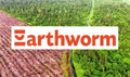 Earthworm members mired in orangutan peat forest loss