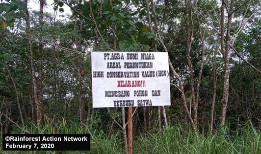 Palm oil firm's NDPE in Leuser Ecosystem deserves support