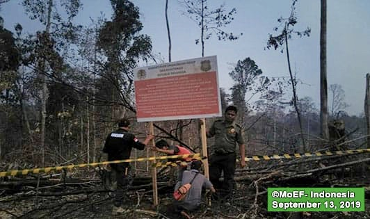 WWF concession sealed due to forest, land fires