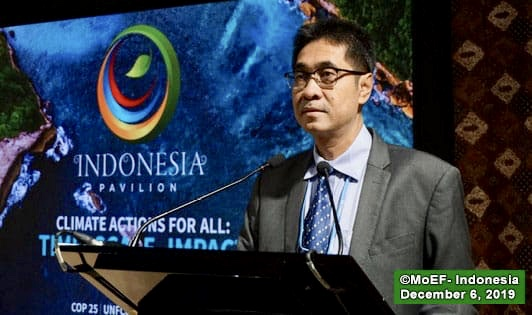 CIFOR slammed by authorities for premature analysis