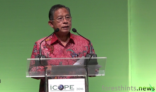Sustainable development not sole responsibility of producing countries, says coordinating minister