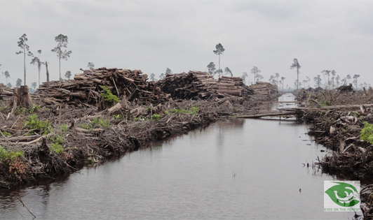 CSOs respond to Indonesian pulp and paper industry's demand for special treatment