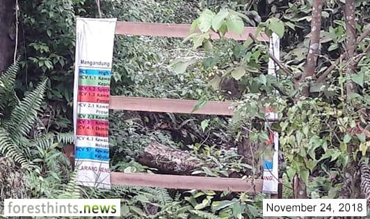 HCV signboards in pulpwood concession go missing