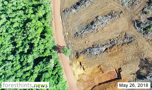 Extra photos confirm ongoing mining of peat forest ecosystem