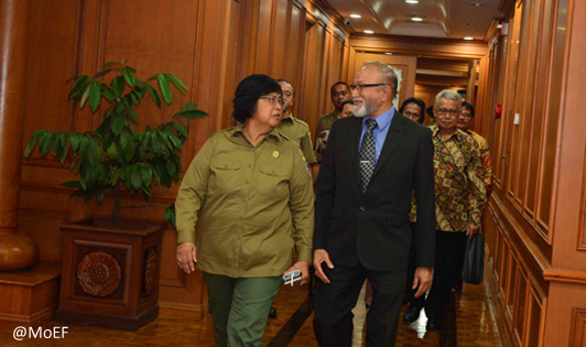 Minister and Acehnese leaders declare moratorium on palm oil and mining expansion in the Leuser Ecosystem