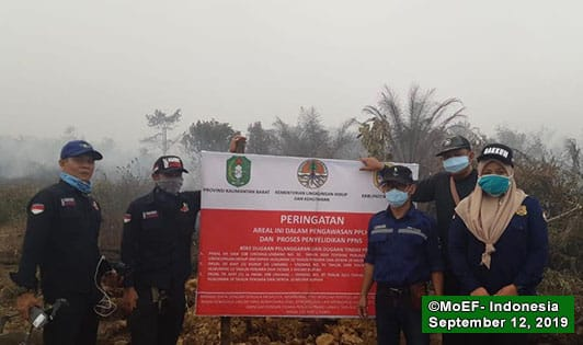 Malaysian concessions at fault for fires and haze sealed