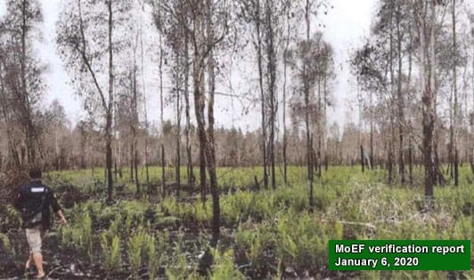 MoEF: Sciencemag news report on forest fires misconceived