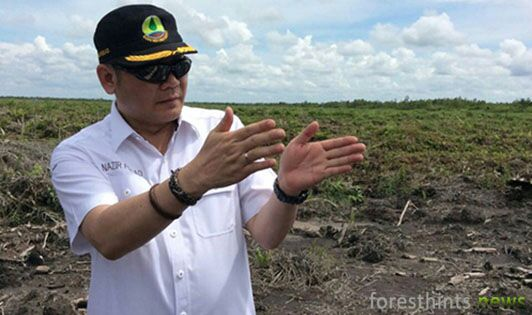 Peat agency calls for APP immediate restoration measures