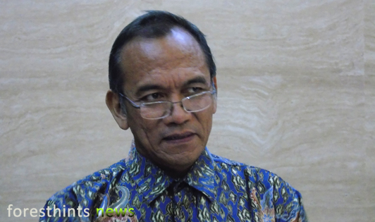 Three factors key to success of Indonesian peat restoration