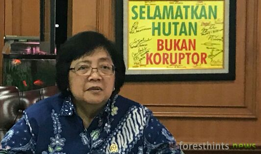 Minister intensifies crackdown on illicit practices in Leuser reserve