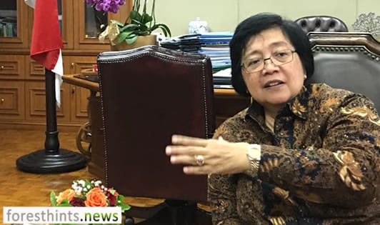 Minister underlines key points of new palm oil moratorium