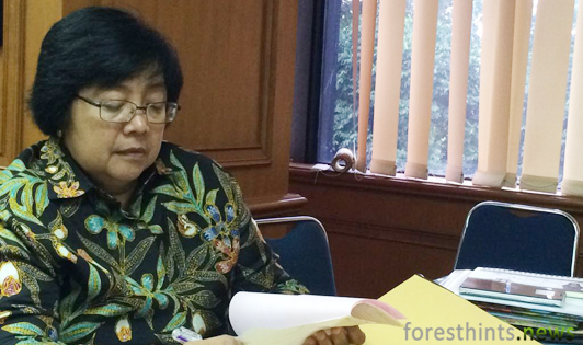 Minister designates Leuser Ecosystem as inseparable part of Aceh spatial plan