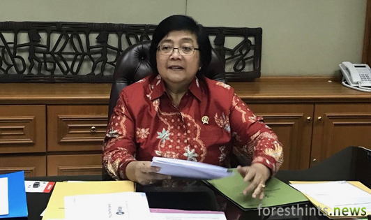 President signs revised peat regulation, ending business-as-usual practices