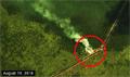 Fire spot in Sungai Putri logging concession put out